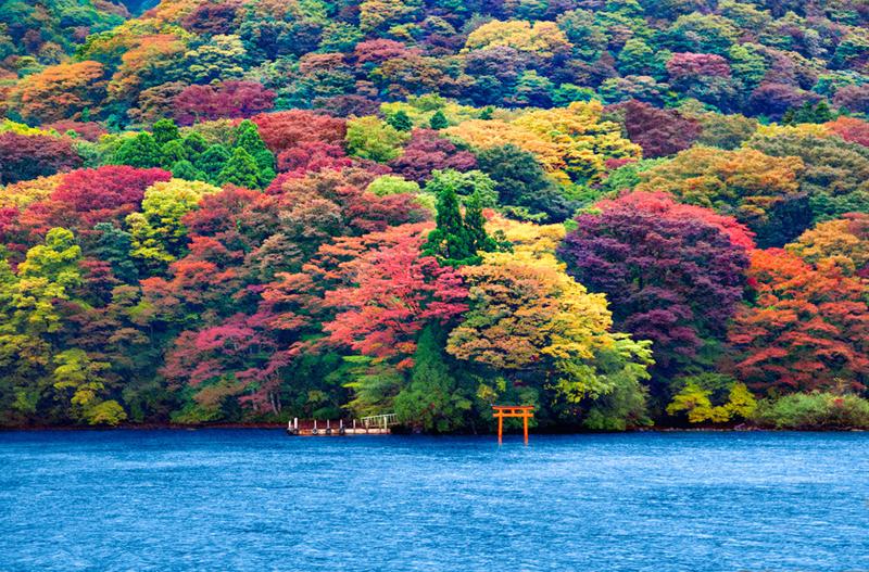 Ashi lake