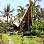 green village 7