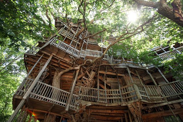 0715_kcfe_treehouse_atb