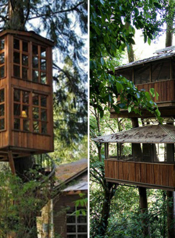 Tree-rific Treehouses