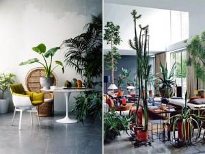 indoor garden 1