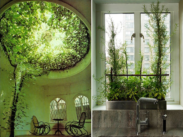 indoor garden 10