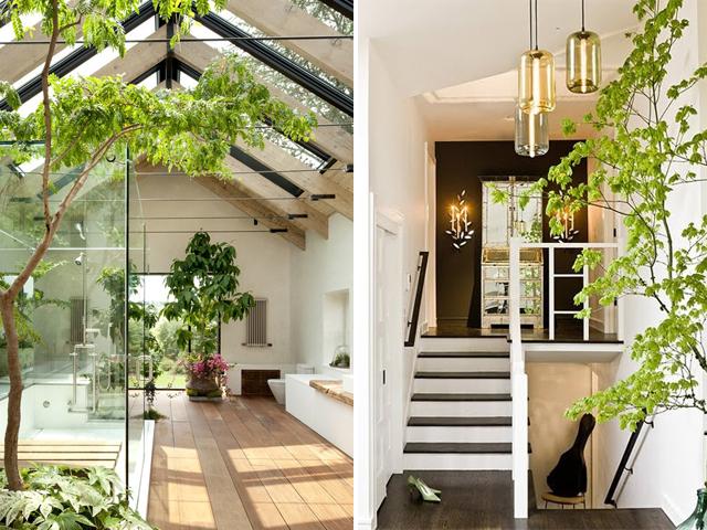 indoor garden 11