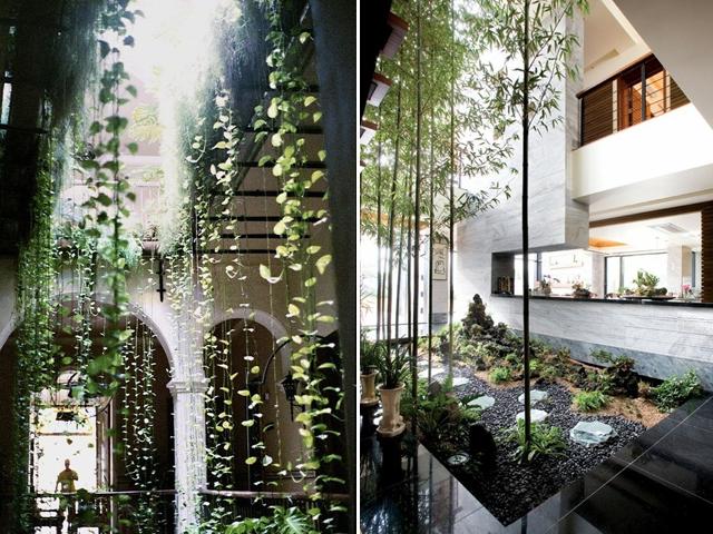 indoor garden 14