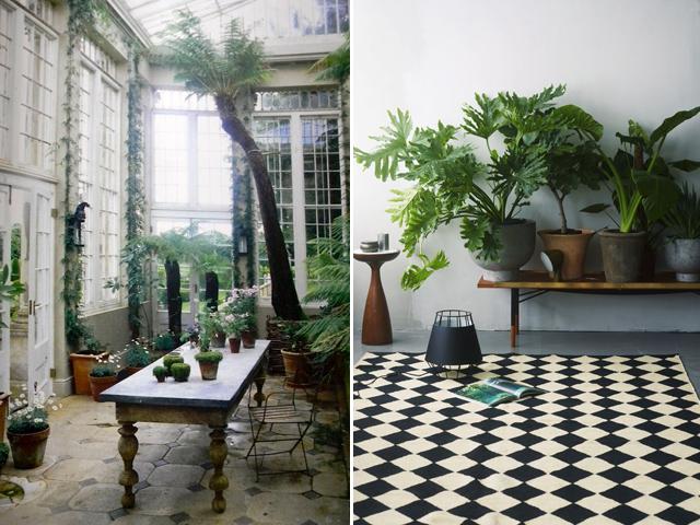 indoor garden 2