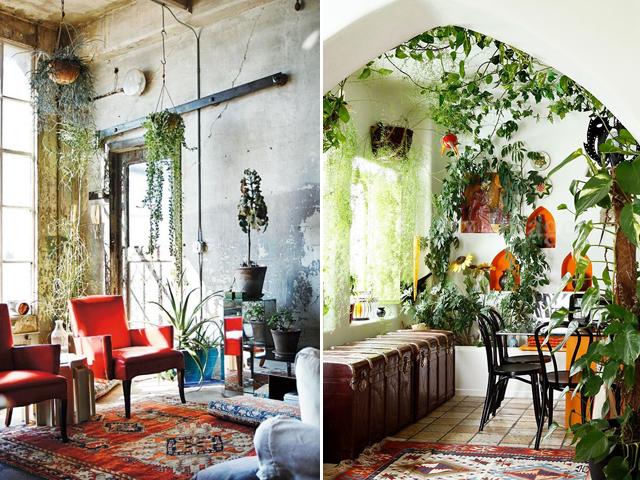 indoor garden 4