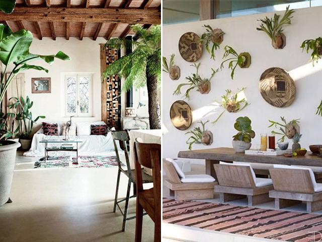 indoor garden 8