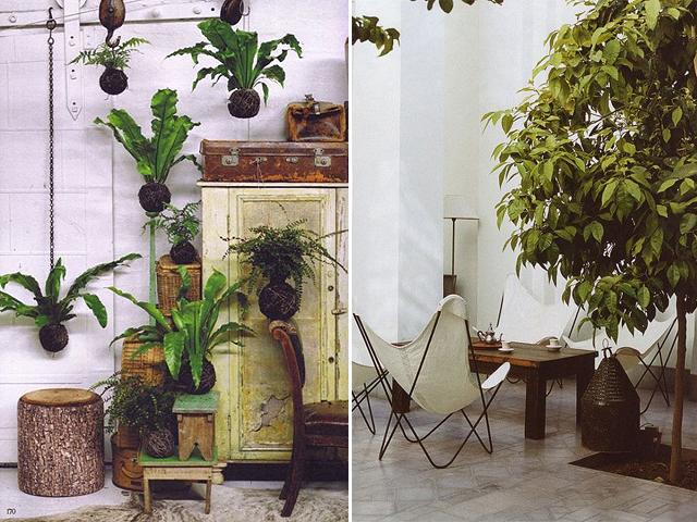 indoor garden 9