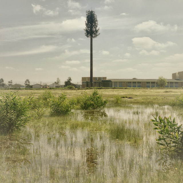 Invasive Species, Eersterivier (2009)