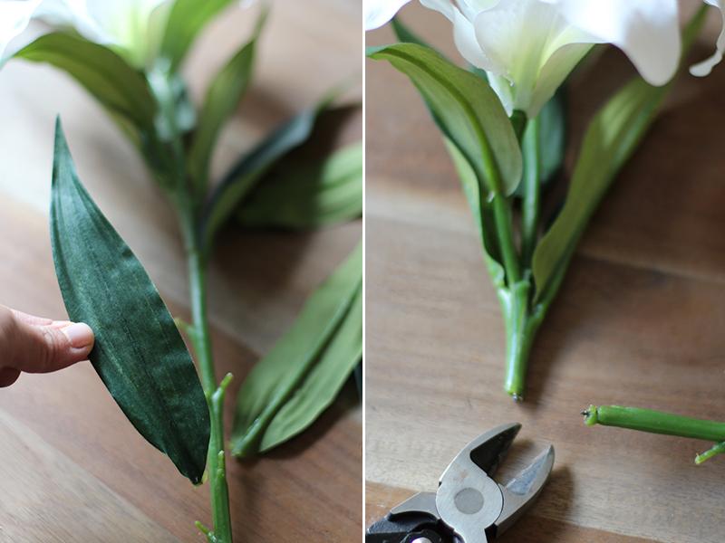 driesflower3