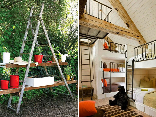 Salvage yard shopping; Ladder pland shelf