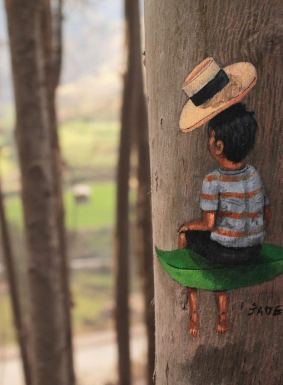 A Painted Tree In Peru