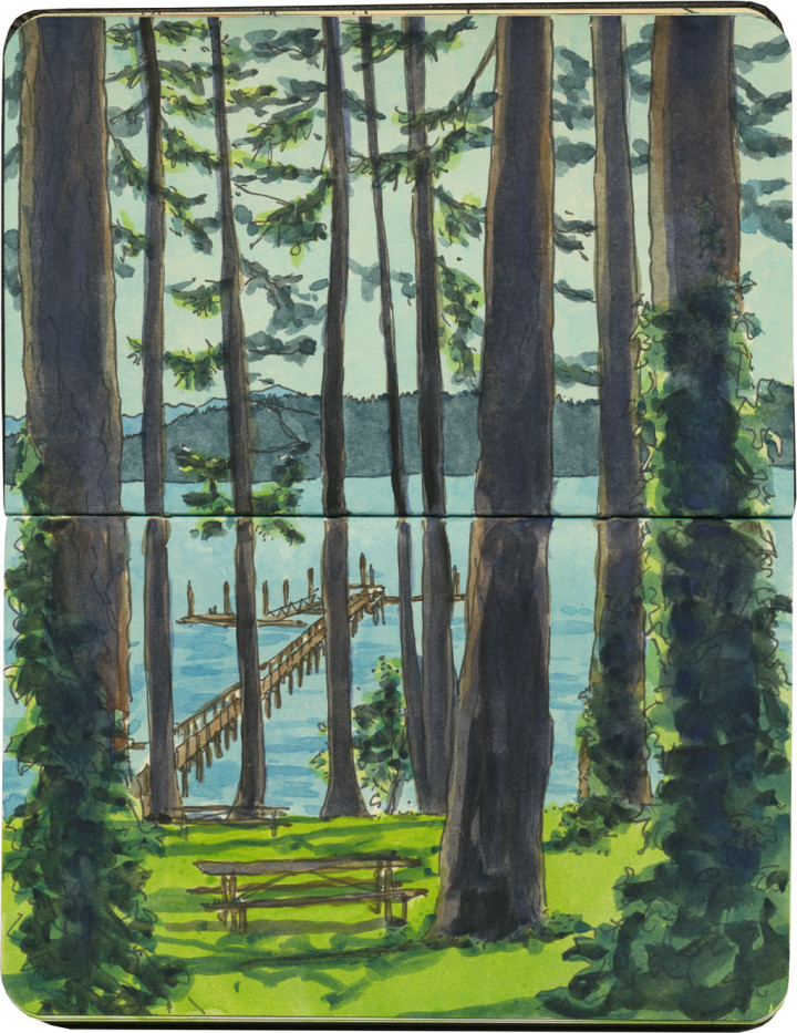 chandler_oleary_key_peninsula_trees-720x933