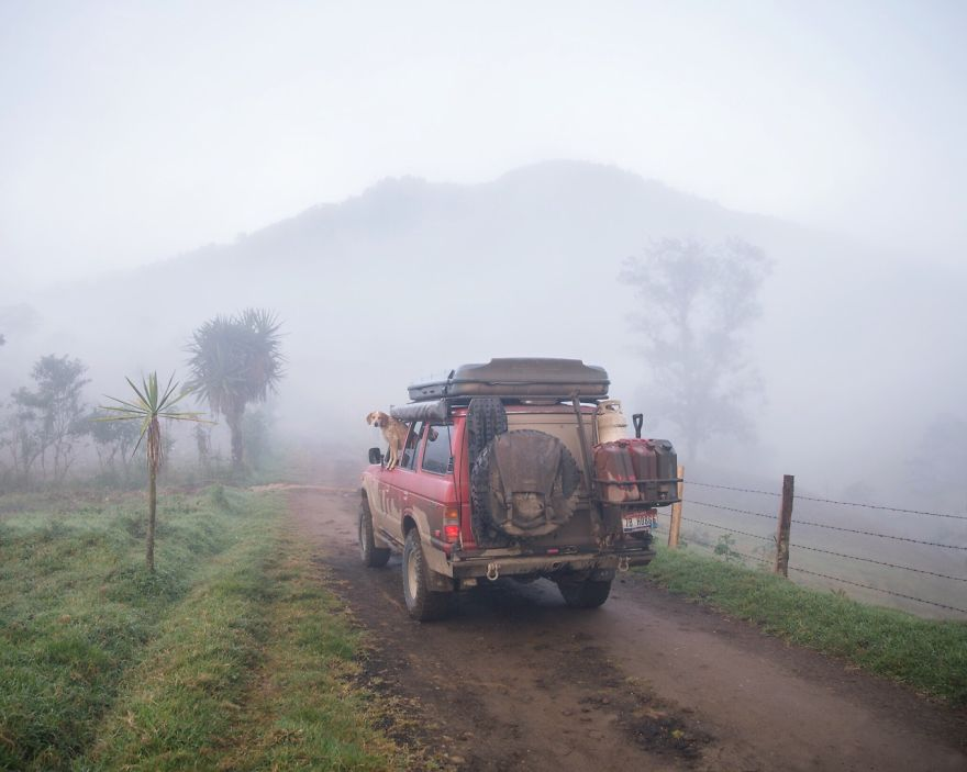 dog-traveling-car-motorcycle-maddie-on-road-16