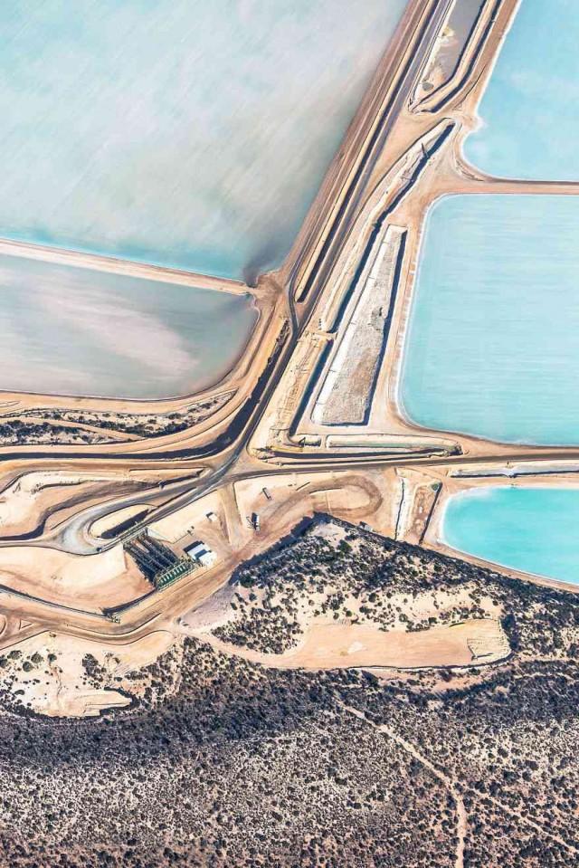 Blue-Fields-No-8-1__880