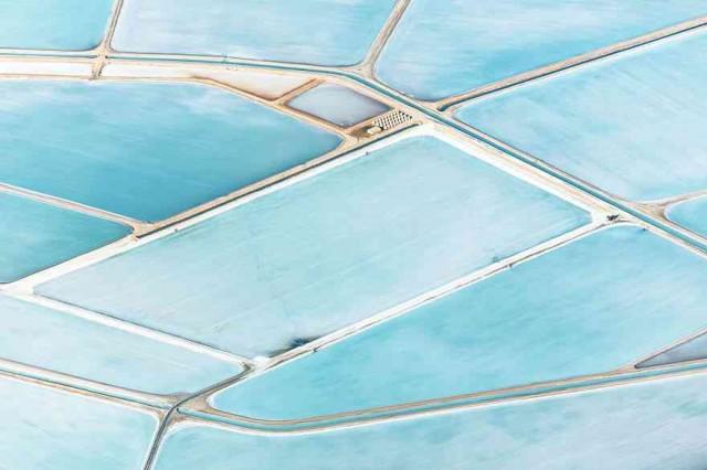 Blue-Fields-No-9-1__880