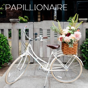 papillionaire_thumb
