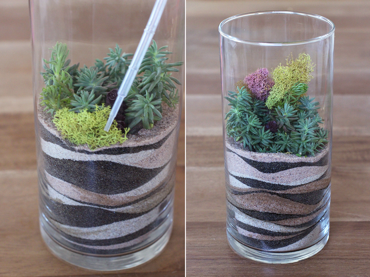 sandterrarium9 - HWTF X Makers Kit DIY Sand Art Terrarium