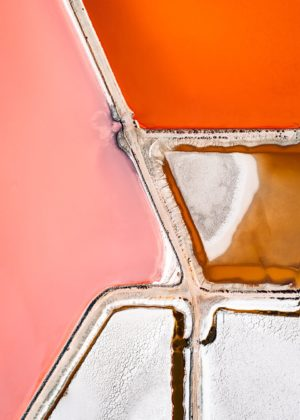 Tom Hegen's Salt Series