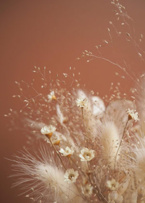 Currently Obsessed With: Dried Flowers & Grasses